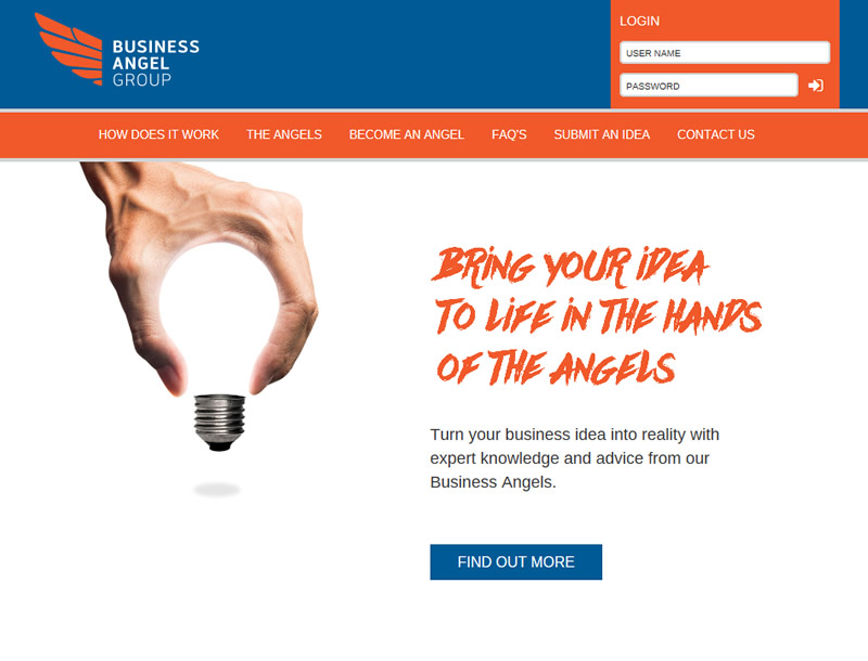 Chelmsford Essex Web Design -  Business Angel Group